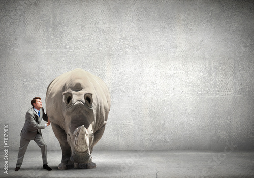 Poster Rhino Not an easy task!