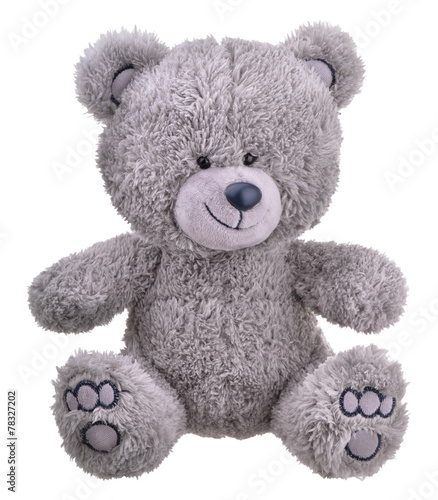 obraz lub plakat Grey furry teddy bear