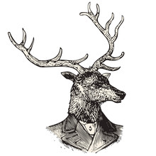 Monsieur Deer
