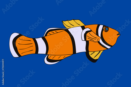 Fotografie, Obraz  Clownfish. Vector illustration. Isolated on blue