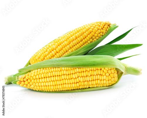 Fotografie, Obraz corn