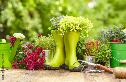 Obraz Outdoor gardening tools on old wood table - fototapety do salonu