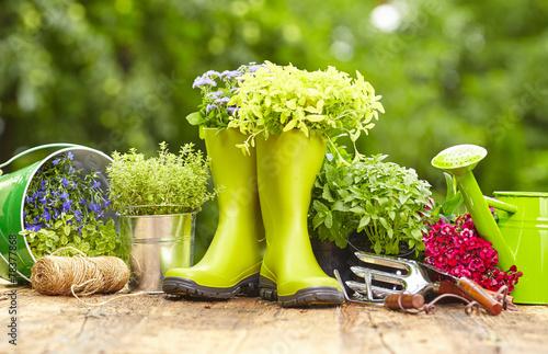 Obraz na płótnie Outdoor gardening tools on old wood table