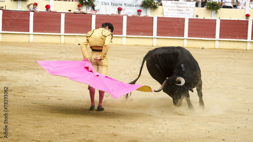 Wall Murals Bullfighting Novillada Parentis en Born