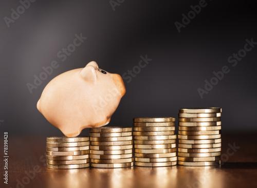 Sparschwein und Münzen