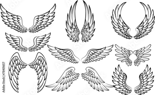 Photo  Illustration of wings collection set