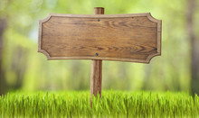 Wooden Sign In Summer Forest Grass
