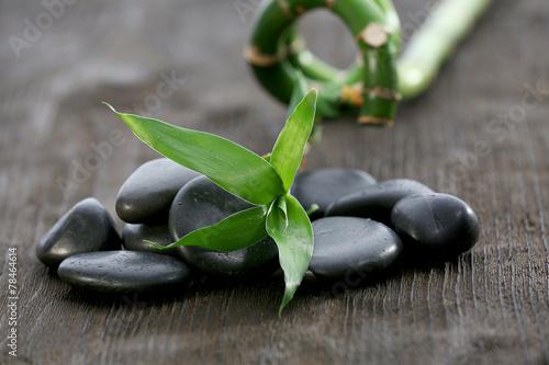 male-czarne-kamyczki-z-zielonym-bambusem