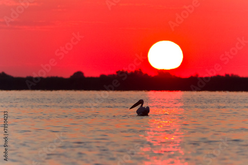 Deurstickers Rood sunrise in the Danube Delta