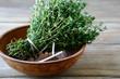 Fresh thyme in a bowl