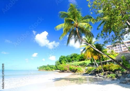 Foto op Plexiglas Caraïben Landscape with blue sky and ocean in Caribbean