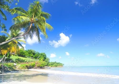 Foto op Canvas Caraïben Caribbean beach