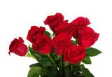 Czerwone róże na białym tle