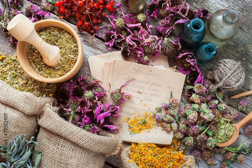 Healing herbs in hessian bags, wooden mortar, bottles with tinct Canvas Print