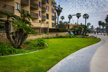 Palm Trees And Buildings Along A Walkway At Pacific Beach, Calif