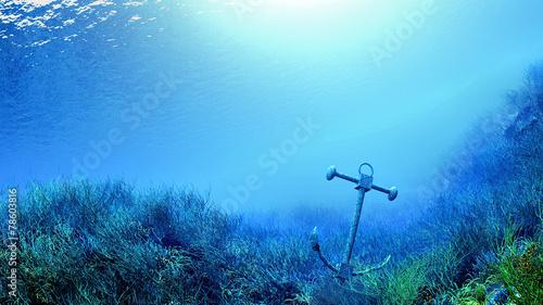 Stampa su Tela sous la mer ancre