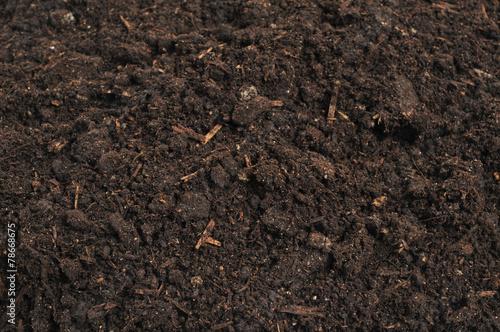 фотография  close-up of soil