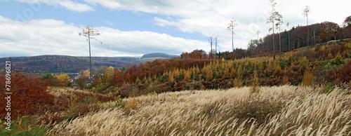 Keuken foto achterwand Turkoois Herbstlandschaft im Wienerwald