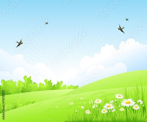 In de dag Lime groen Clean spring amazing scenery. Vector illustration