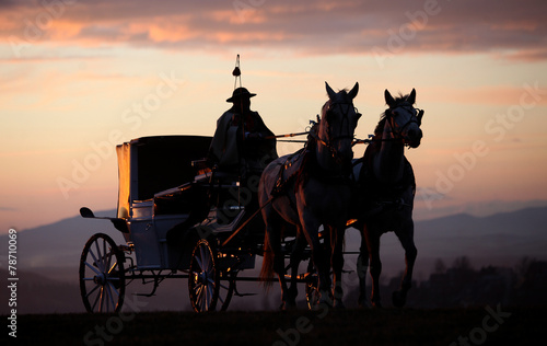 Photo the carriage horsed at the sunset
