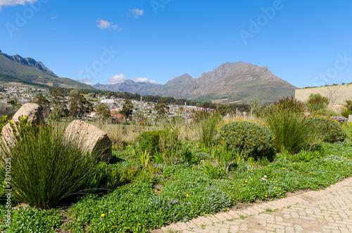 Foto op Plexiglas Zuid Afrika Views of Stellenbosch
