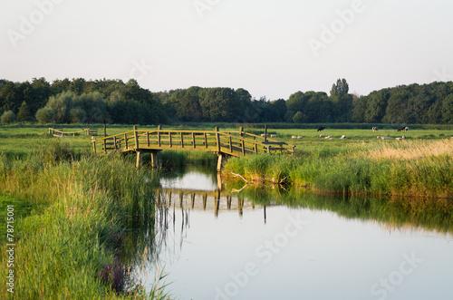 Cuadros en Lienzo countryside bridge - Netherlands Amsterdam