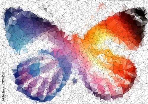 multicolor bright butterfly abstract geometric background