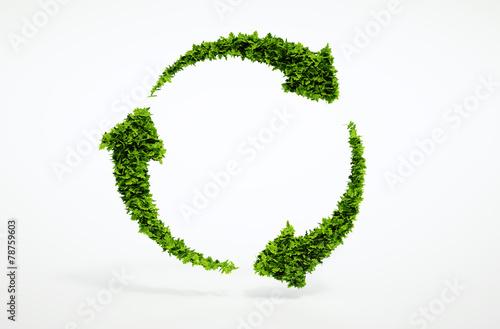 Fotografie, Obraz  Eco sustainable development sign.