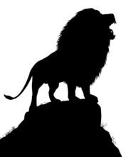 Lion Roar