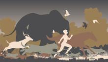 Natural Runner