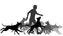 Running With Dogs