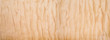 Texture of Quilted Maple
