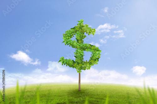 Foto auf Gartenposter Landschappen tree in the shape of dollar sign, financial success