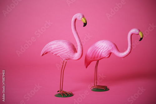 Fotobehang Flamingo Pink flamingoes in studio