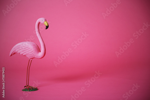 Deurstickers Flamingo Pink flamingo in studio