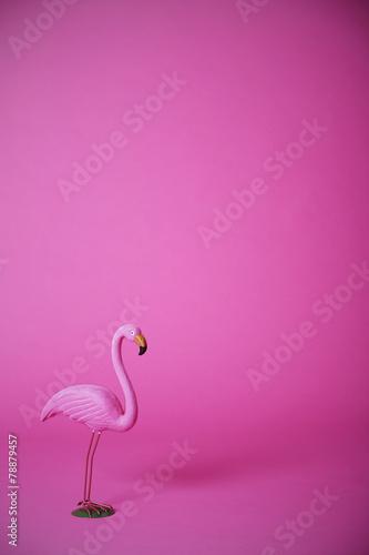 Foto op Aluminium Flamingo Pink flamingo in studio