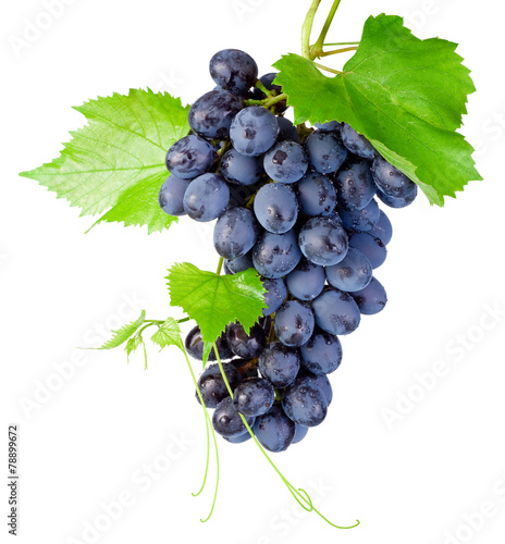Fotografía Fresh bunch of grapes with leaves isolated on a white background