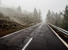 Foggy Road To Volcano Teide, Tenerife. Canary Islands