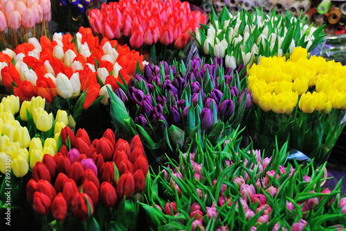 Colorful tulips on sale in flower market Wallpaper Mural