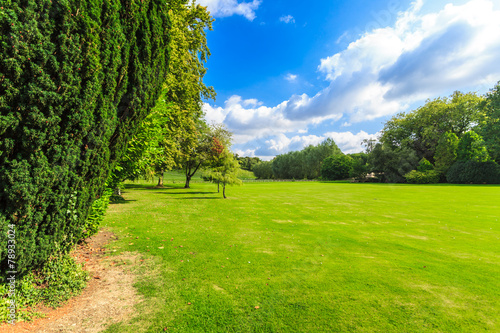 In de dag Lime groen Countryside view of green field. Nature landscape