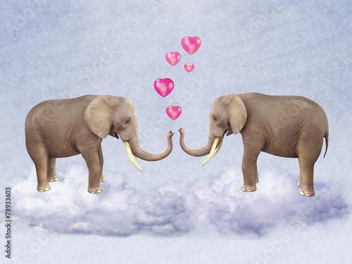 dwa-zakochane-slonie