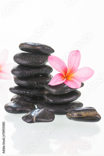 Fototapety, obrazy: Plumeria flowers and black stones close-up