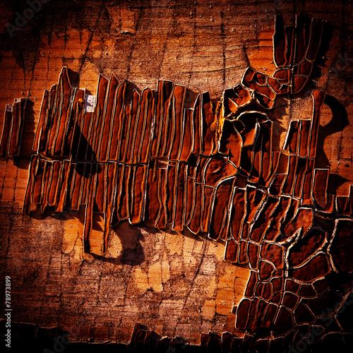 Egypt surface