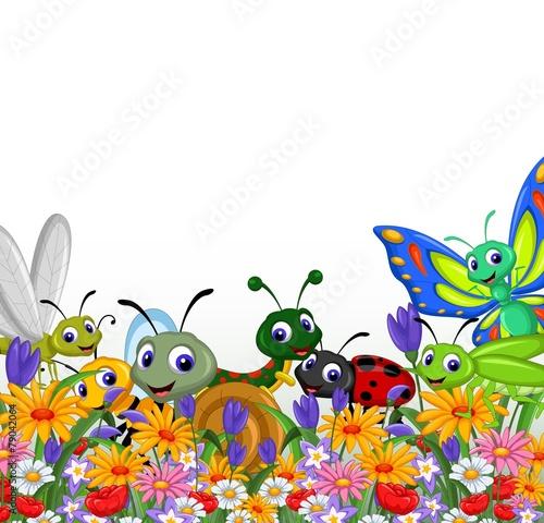 zbior-owadow-w-ogrodzie-kwiatowym