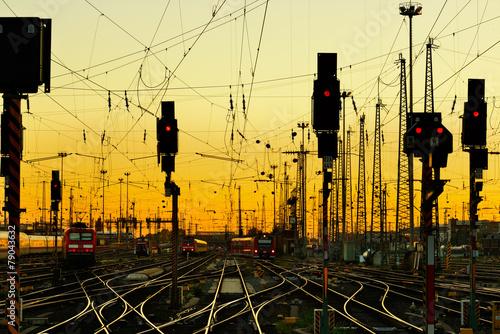 Obraz Tory kolejowe o zachodzie słońca - fototapety do salonu