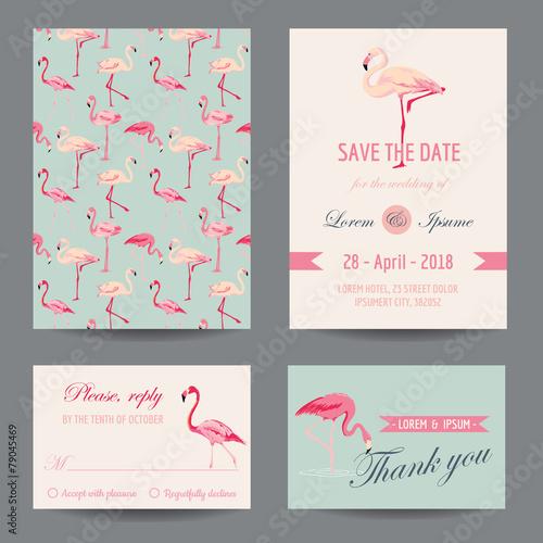 Fotografía  Invitation-Congratulation Card Set - Flamingo Theme - in vector