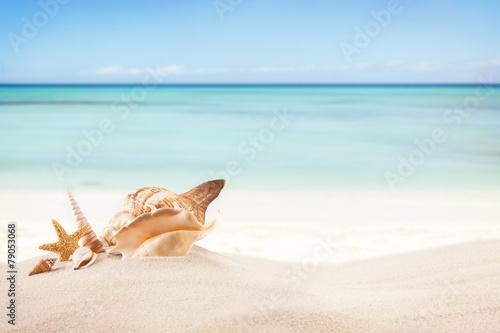 Spoed Foto op Canvas Blauwe hemel Sandy beach with blank paper for text
