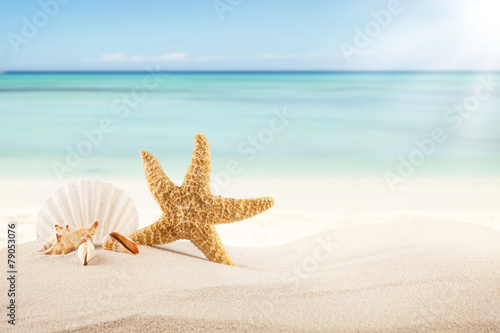 Photo Stands Light blue Sandy beach with blank paper for text