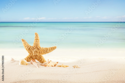 Tuinposter Lichtblauw Sandy beach with blank paper for text