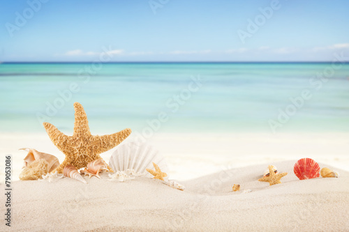 Foto auf Gartenposter Licht blau Sandy beach with blank paper for text